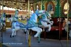 I love carousel's.
