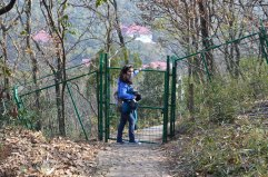So at the end of the bamboo garden there's this gate. It's locked! Ugh.. so we had to back track to the beginning.