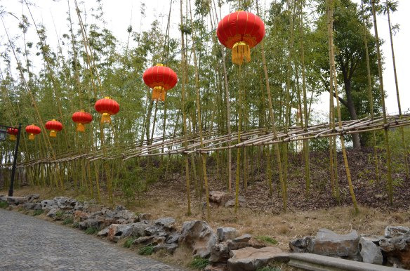The bamboo shoots are supported by a trellis made of bamboo. Genius!